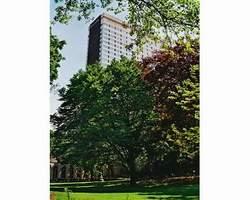 Hilton Hotel Brussels Belgium